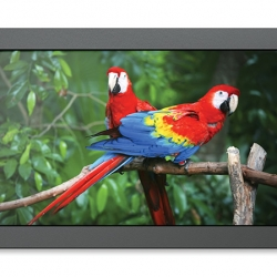 "17"" SmartView HD Studio Monitor"